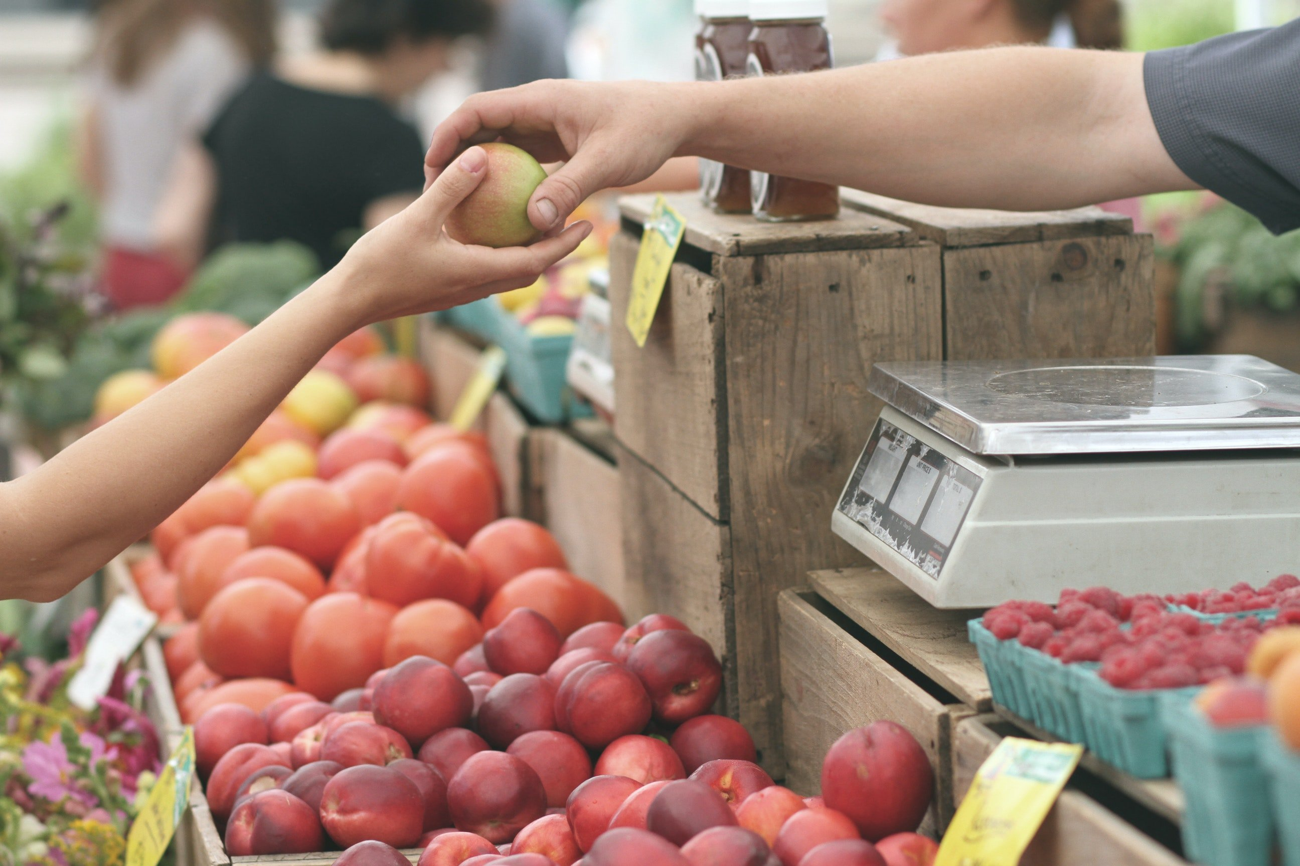 Thirteen Ways to Support Local While at Home (Without Risking your Health)